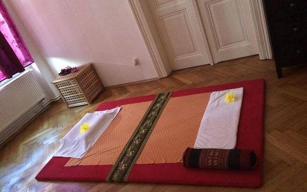 Thajská masáž zad (60 minut)4