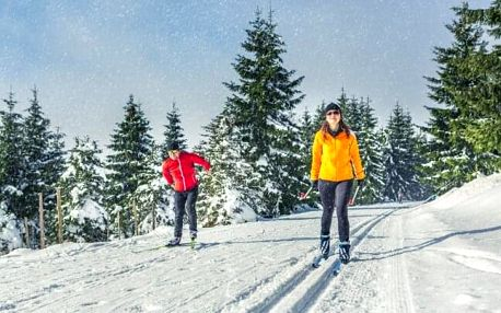 Šumava blízko Bavorska i ski areálu v Hotelu Salivar *** s chutnou polopenzí + sleva na vstup do sauny