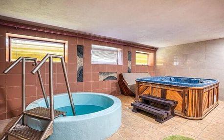 Pobyt v krásné přírodě u Trenčianských Teplic: Hotel Dynamic *** s polopenzí a novým privátním wellness