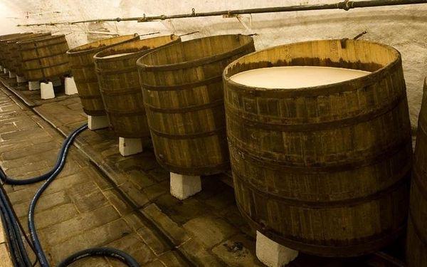 Prohlídka pivovaru Plzeňský prazdroj, cca 70 minut, počet osob: 1 osoba, Plzeň (Plzeňský kraj)2