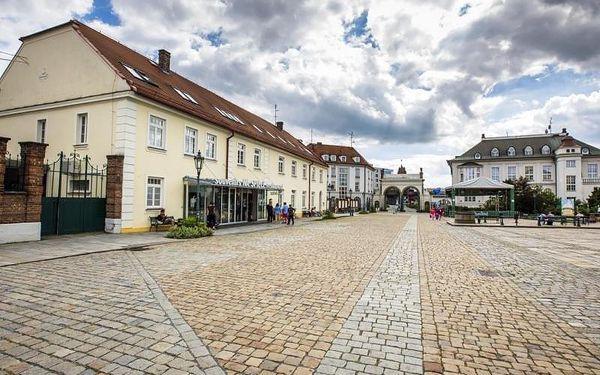 Prohlídka pivovaru Plzeňský prazdroj, cca 70 minut, počet osob: 1 osoba, Plzeň (Plzeňský kraj)3