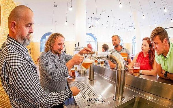 Prohlídka pivovaru Gambrinus, cca 120 minut, počet osob: 1 osoba, Plzeň (Plzeňský kraj)2