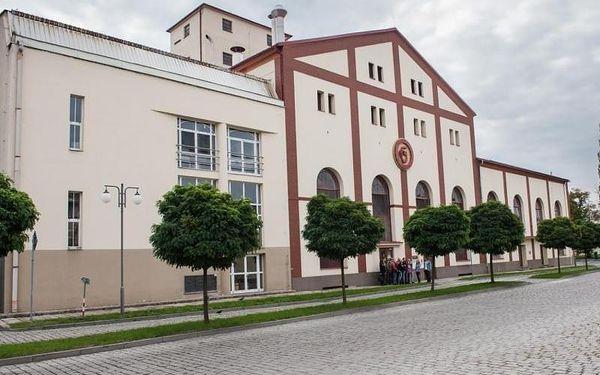 Prohlídka pivovaru Gambrinus, cca 120 minut, počet osob: 1 osoba, Plzeň (Plzeňský kraj)3