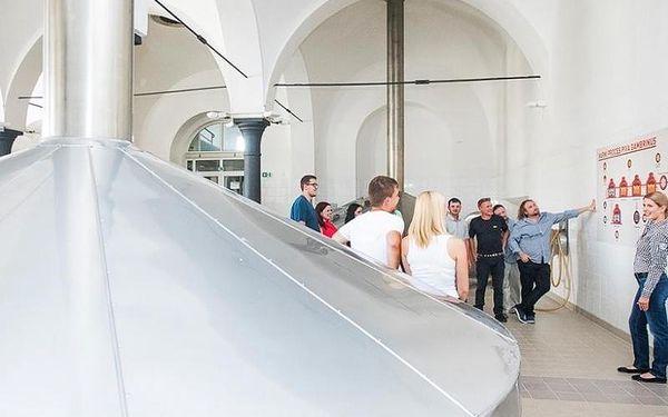 Prohlídka pivovaru Gambrinus, cca 120 minut, počet osob: 1 osoba, Plzeň (Plzeňský kraj)5