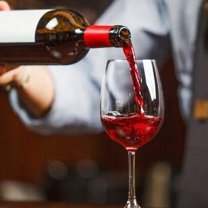 Jižní Morava: Valtice v Penzionu Alenka s řízenou degustací vína s občerstvením, láhví vína a snídaněmi