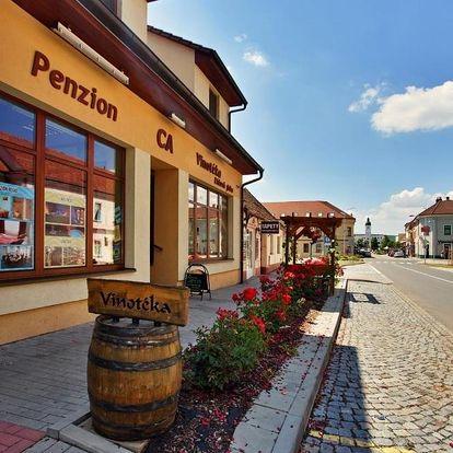 Kyjov, Jihomoravský kraj: Penzion & Vinný bar Régio