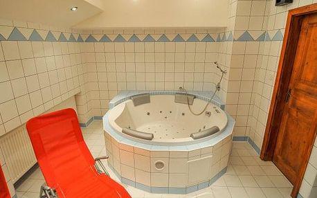 Žďárské vrchy v Hotelu Mánes *** s wellness centrem, sportovním vyžitím, Nordic Walking holemi a snídaněmi