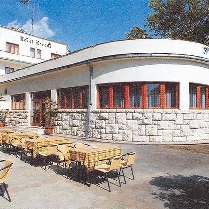 Maďarsko - Harkány na 6-15 dnů, snídaně v ceně