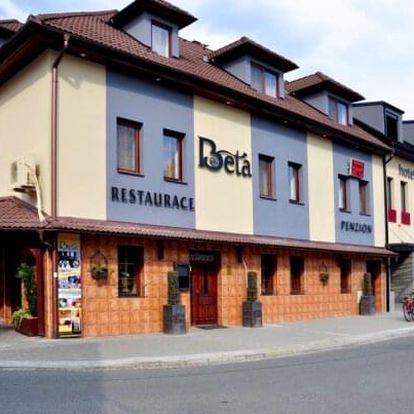 Slovácko: Výlet za vínem do Bzence do Hotelu Beta *** s ochutnávkou 42 druhů vín a polopenzí