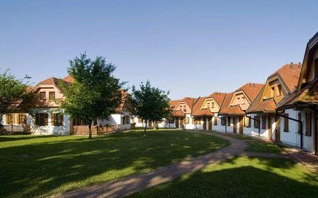 Slovinsko - Moravske Toplice na 3-9 dnů, polopenze