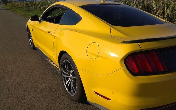 20 minut spolujízdy ve Fordu Mustang GT4