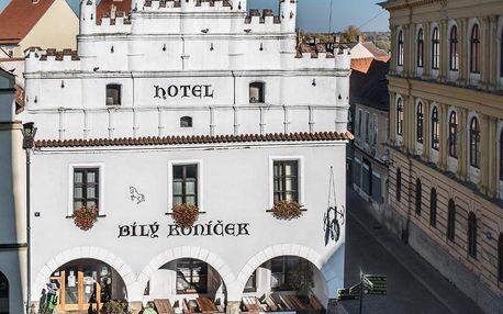 Třeboň, Jihočeský kraj: Hotel Bílý Koníček