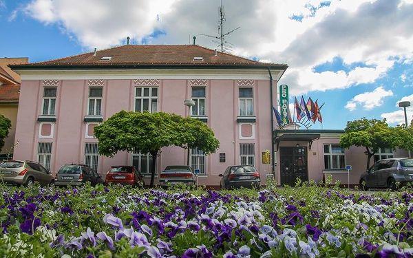 Pro Patria Ensana Health Spa Hotel (Spa Hotel Pro Patria), Piešťany, vlastní doprava, polopenze3