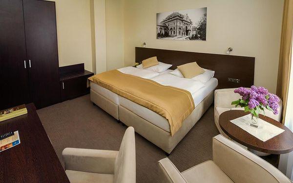 Pro Patria Ensana Health Spa Hotel (Spa Hotel Pro Patria), Piešťany, vlastní doprava, polopenze5