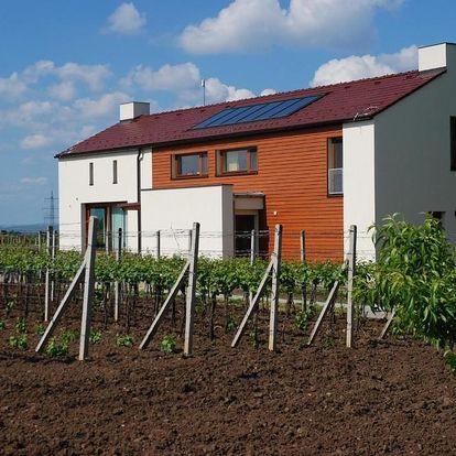 Valtice, Jihomoravský kraj: Ubytování Na Vinici