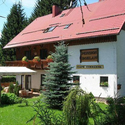 Železná Ruda, Plzeňský kraj: Pension Roklan
