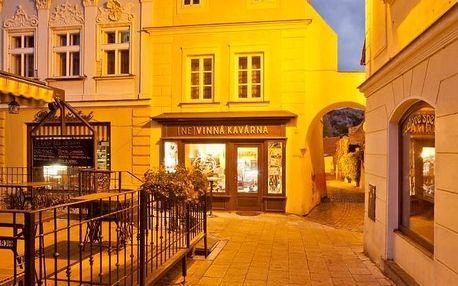 Mikulov, Jihomoravský kraj: (Ne)vinná kavárna