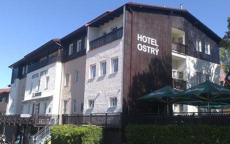 Železná Ruda, Plzeňský kraj: Hotel Ostry