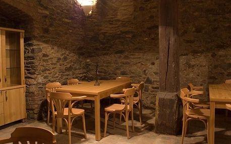 Znojmo, Jihomoravský kraj: Penzion Zlatý vůl