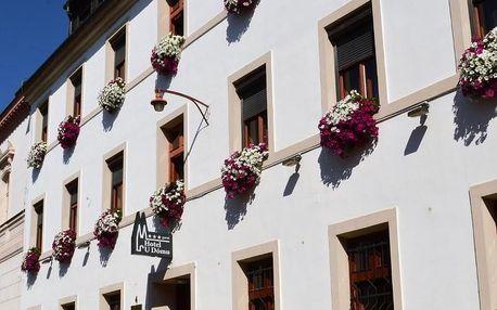 Olomouc, Olomoucký kraj: Hotel U Dómu sv. Václava