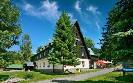 Rokytnice nad Jizerou, Liberecký kraj: Hotel Stary Mlyn