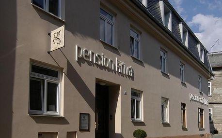 Olomouc, Olomoucký kraj: Pension Křivá