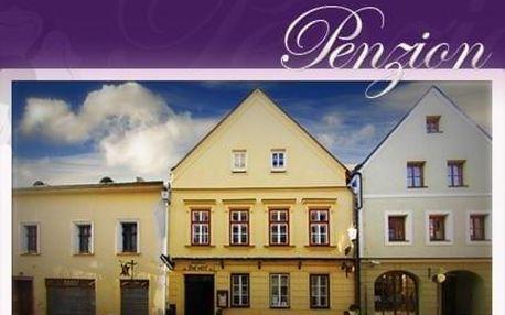 Jindřichův Hradec, Jihočeský kraj: Penzion U Lucerny