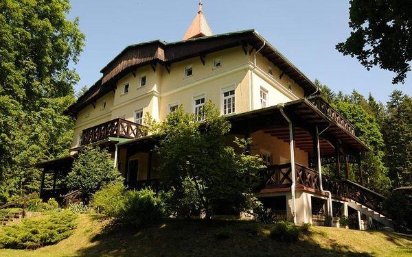 Penzion Szwajcarka