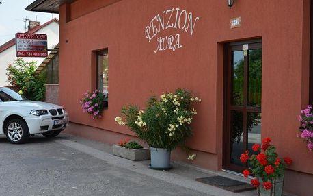 Dvůr Králové nad Labem: Penzion Aura