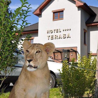 Beskydy - Valašsko: Hotel Terasa