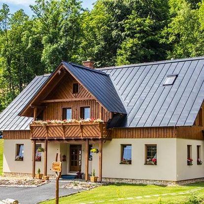 Rokytnice nad Jizerou, Liberecký kraj: Apartmány Udatný