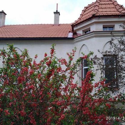 Orlické hory: Aparthotel Brokeš