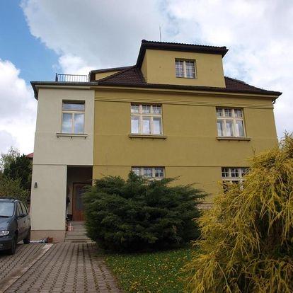 Litoměřice, Ústecký kraj: Dalimilka