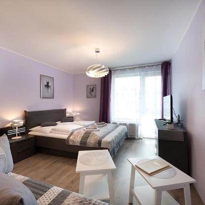 Vysočina: B2B Apartments