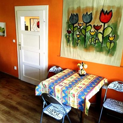 Olomouc, Olomoucký kraj: Apartmán Flora