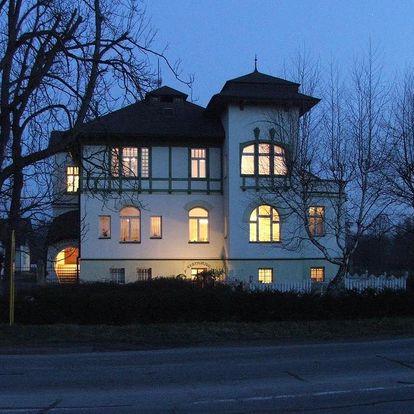 Olomoucký kraj: Pension Habermannova Vila
