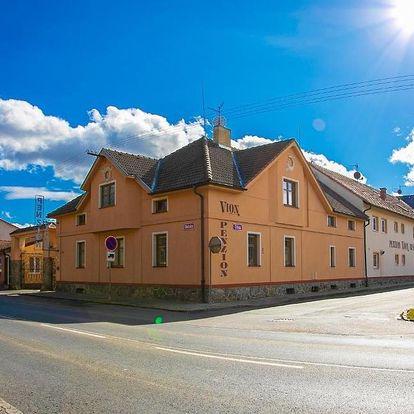 Plzeňsko: Penzion Vion