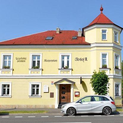 Františkovy Lázně, Karlovarský kraj: Pension Josef