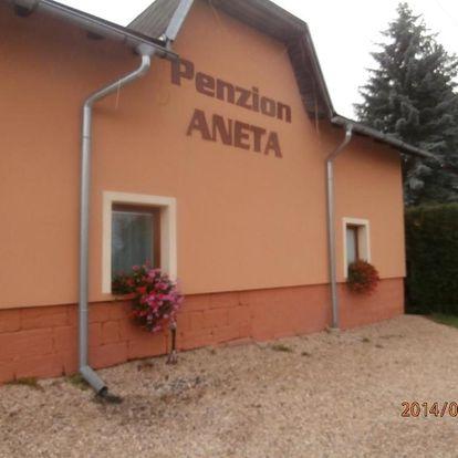 Český ráj: Penzion Aneta