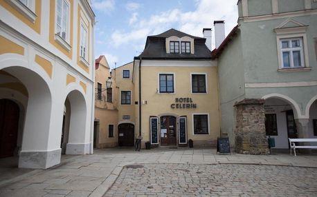 Vysočina: Hotel Celerin