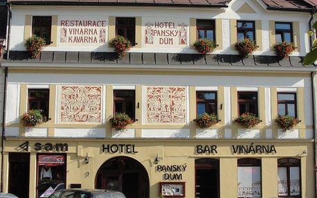 Vysočina: Hotel Panský dům