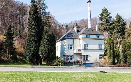 Olomoucký kraj: Vila Tereza