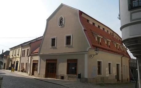 Telč, Vysočina: Penzion Hradební
