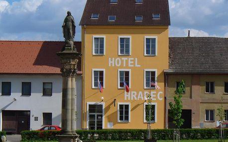 Královohradecký kraj: Hotel Hradec