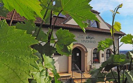 Jižní Morava: Hotel Vinohrad