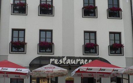 Olomoucký kraj: Hotel Amco