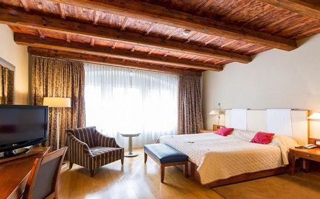 Praha a okolí: The Golden Wheel Hotel