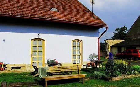 Vysočina: Dvůr v Borovné