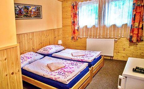 Krušné hory: Penzion Radošov ubytování v soukromí