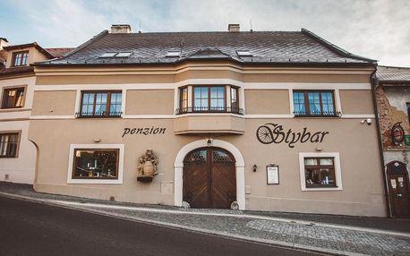 Plzeňsko: Penzion Štybar